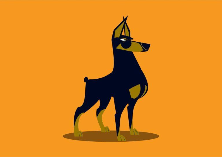 chien catégorie 1 2 3